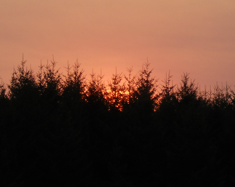 sunrise 016.JPG
