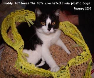 CatTote1W3.jpg